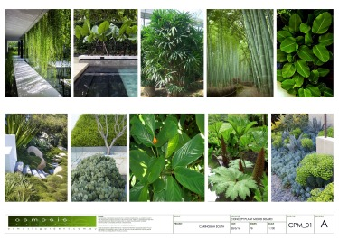 plant-mood